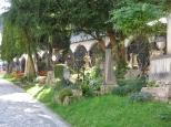Cemetery_5