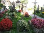 Cemetery_6