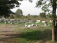 Ephesus Ruins_25 Cemetery
