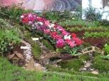 World Soil Day_3