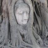 Sandstone Buddha Image_2