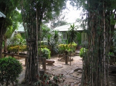 Green View Hostel