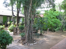 Green View Hostel_2
