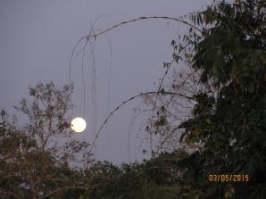 Full Moon_3