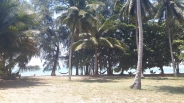 Beach from Bungalow