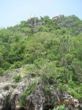 Wat Hill Longview