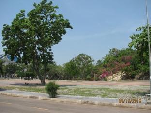 Wat Park