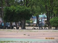 Wat Park_2