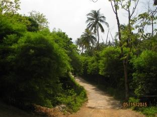 Hike to Hin Wong