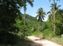 Path Pict