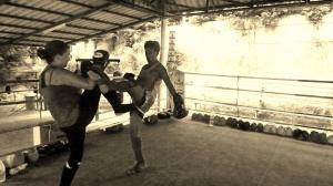 Blocking a Kick