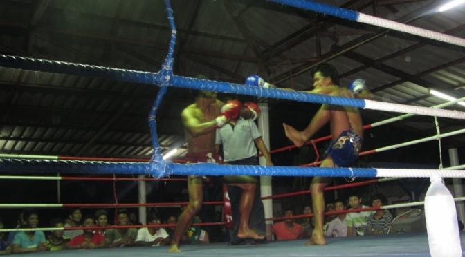 Koh Tao Fight Nights