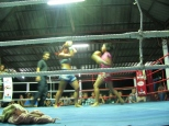 Women Fight_2