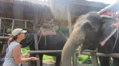 Me with Elephant_3