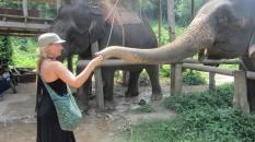 Anna Feeding Elephant_3