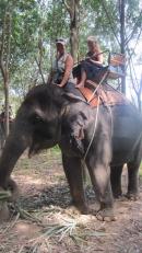 Elephant Ride_2