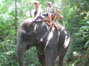 Elephant Ride_3