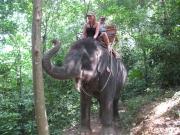 Elephant Ride_5