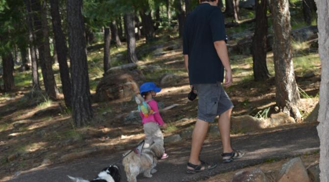Beneficios al caminar en el Bosque con tu Familia