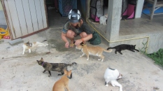 Anna with Shelter Cats