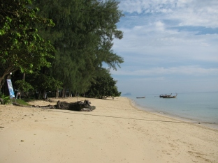 Beaches_4