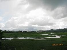 Langkawi Landscape_3