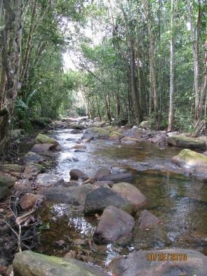 River Behind