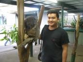 A with a Koala