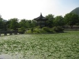 Gyeongbokgung Palace_10