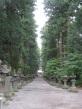 Yoshidagushi Climbing Trail_8