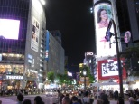 Shibuya Crossing_8